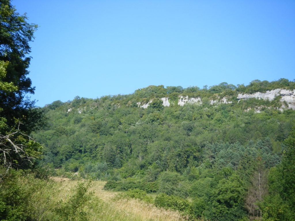 La roche Saint-Maurice à Villechantria et les 3 tilleuls templiers